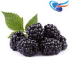 Blackberry e Juice