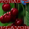 Cherry Balsam e Juice