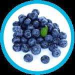 SmokeStik eLiquid Blueberry
