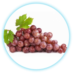 SmokeStik eLiquid Grape