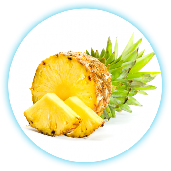SmokeStik eLiquid Pineapple