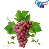 Grape eJuice