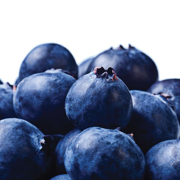 Blueberry Blast (30ML)