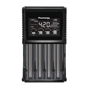 Pownergy BIA- 4 Bay Charging Station