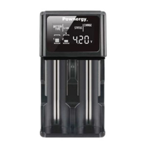 Pownergy BIA- 2 Bay Charging Station